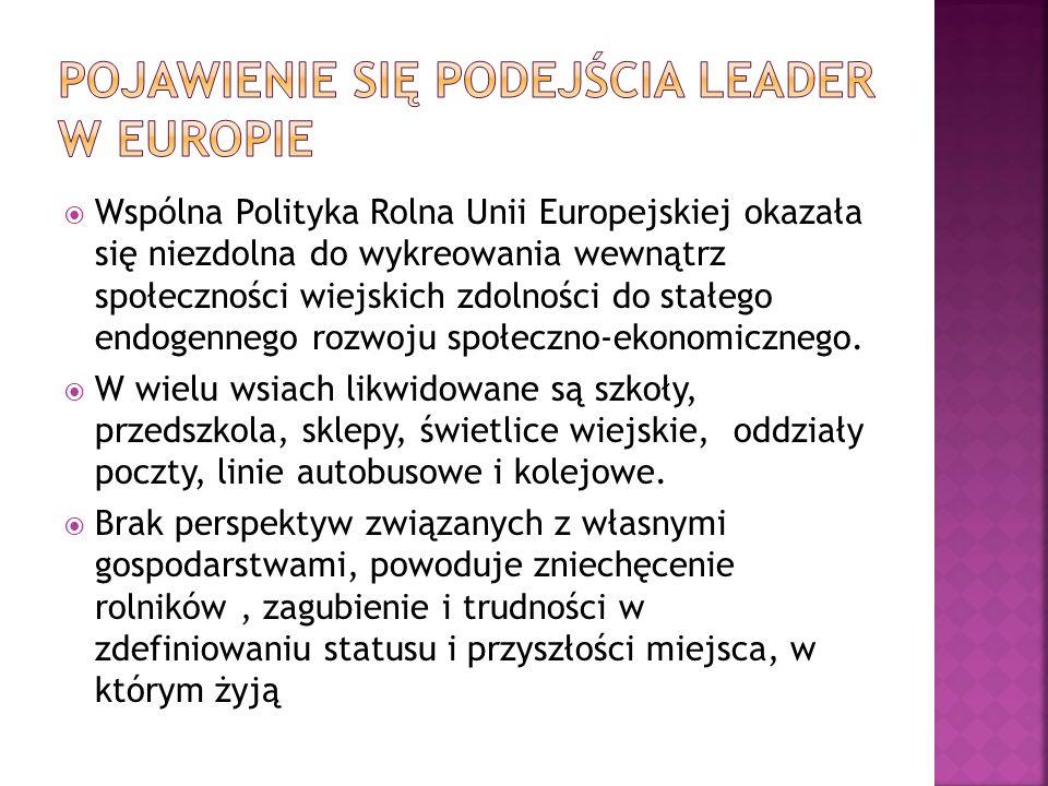 Plan na lata 2007-13 zakładał powołanie 200 lokalnych grup działania które miały funkcjonować na obszarze pokrywającym w ponad 50 % terytorium Polski.
