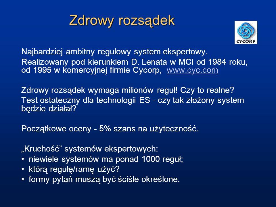 Zdrowy rozsądek Najbardziej ambitny regułowy system ekspertowy. Realizowany pod kierunkiem D. Lenata w MCI od 1984 roku, od 1995 w komercyjnej firmie