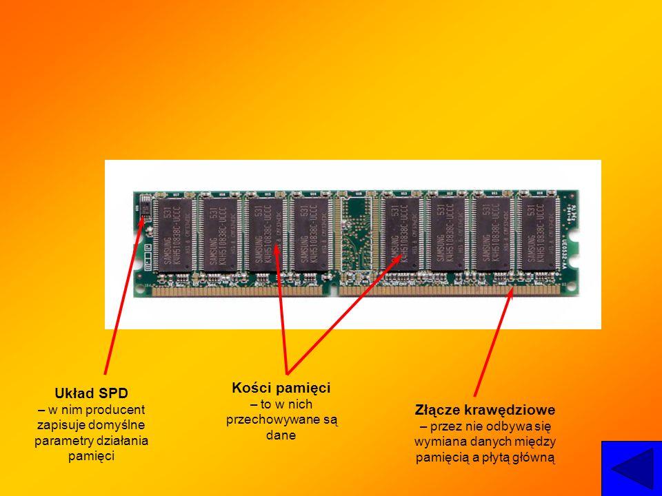 Układ SPD – w nim producent zapisuje domyślne parametry działania pamięci Kości pamięci – to w nich przechowywane są dane Złącze krawędziowe – przez n
