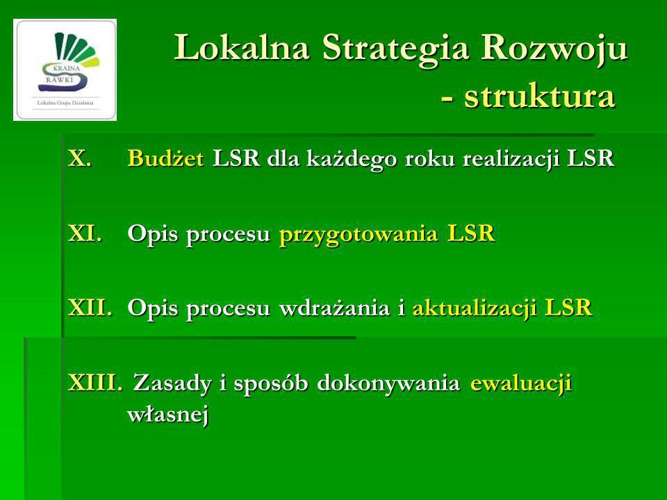 Lokalna Strategia Rozwoju - struktura X.Budżet LSR dla każdego roku realizacji LSR XI.Opis procesu przygotowania LSR XII.Opis procesu wdrażania i aktualizacji LSR XIII.
