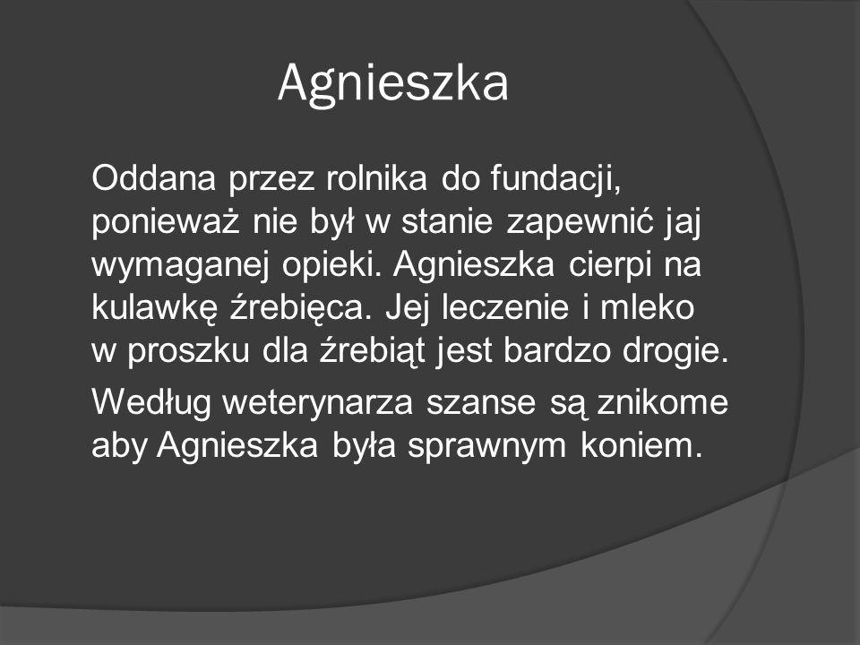 Agnieszka Oddana przez rolnika do fundacji, ponieważ nie był w stanie zapewnić jaj wymaganej opieki. Agnieszka cierpi na kulawkę źrebięca. Jej leczeni