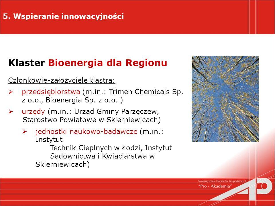 5. Wspieranie innowacyjności Klaster Bioenergia dla Regionu Członkowie-założyciele klastra: przedsiębiorstwa (m.in.: Trimen Chemicals Sp. z o.o., Bioe