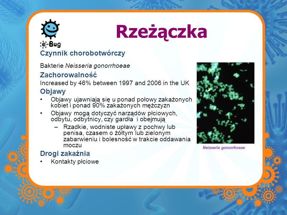 Rzeżączka Czynnik chorobotwórczy Bakterie Neisseria gonorrhoeae Zachorowalność Increased by 46% between 1997 and 2006 in the UK Objawy Objawy ujawniaj