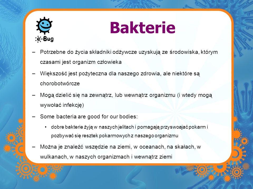 Bakterie –Potrzebne do życia składniki odżywcze uzyskują ze środowiska, którym czasami jest organizm człowieka –Większość jest pożyteczna dla naszego
