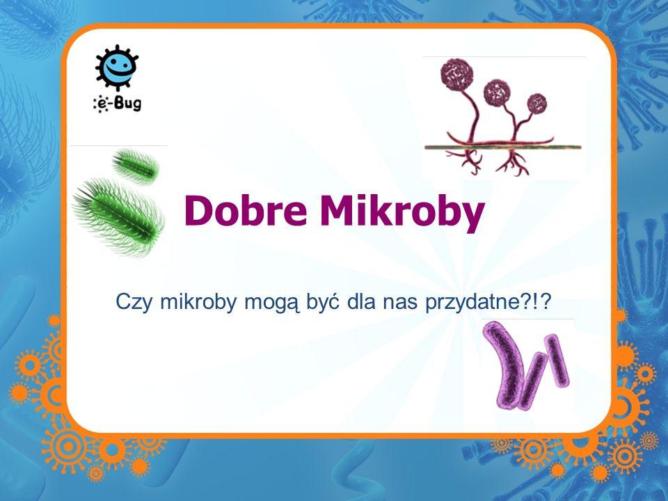 Dobre Mikroby Czy mikroby mogą być dla nas przydatne?!?