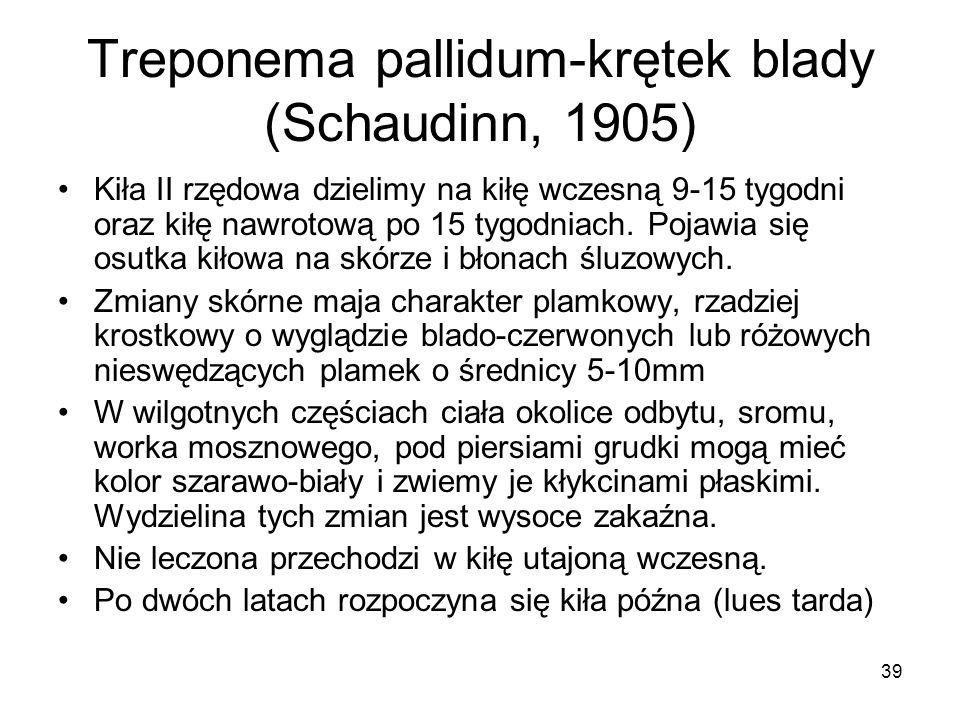 39 Treponema pallidum-krętek blady (Schaudinn, 1905) Kiła II rzędowa dzielimy na kiłę wczesną 9-15 tygodni oraz kiłę nawrotową po 15 tygodniach. Pojaw