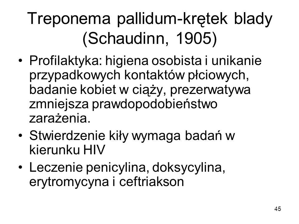 45 Treponema pallidum-krętek blady (Schaudinn, 1905) Profilaktyka: higiena osobista i unikanie przypadkowych kontaktów płciowych, badanie kobiet w cią