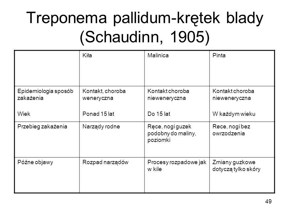 49 Treponema pallidum-krętek blady (Schaudinn, 1905) KiłaMalinicaPinta Epidemiologia sposób zakażenia Wiek Kontakt, choroba weneryczna Ponad 15 lat Ko