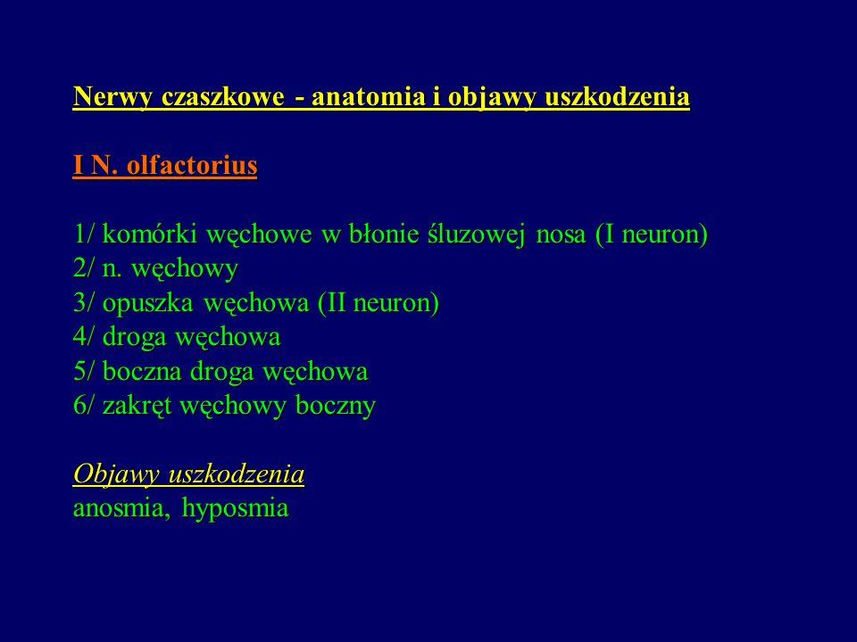 Nerwy czaszkowe - anatomia i objawy uszkodzenia I N. olfactorius 1/ komórki węchowe w błonie śluzowej nosa (I neuron) 2/ n. węchowy 3/ opuszka węchowa