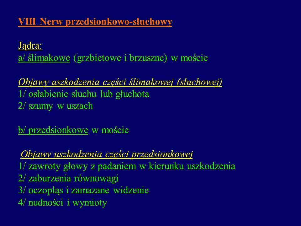 VIII Nerw przedsionkowo-słuchowy Jądra: a/ ślimakowe (grzbietowe i brzuszne) w moście Objawy uszkodzenia części ślimakowej (słuchowej) 1/ osłabienie s