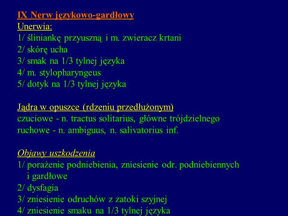 IX Nerw językowo-gardłowy Unerwia: 1/ śliniankę przyuszną i m. zwieracz krtani 2/ skórę ucha 3/ smak na 1/3 tylnej języka 4/ m. stylopharyngeus 5/ dot