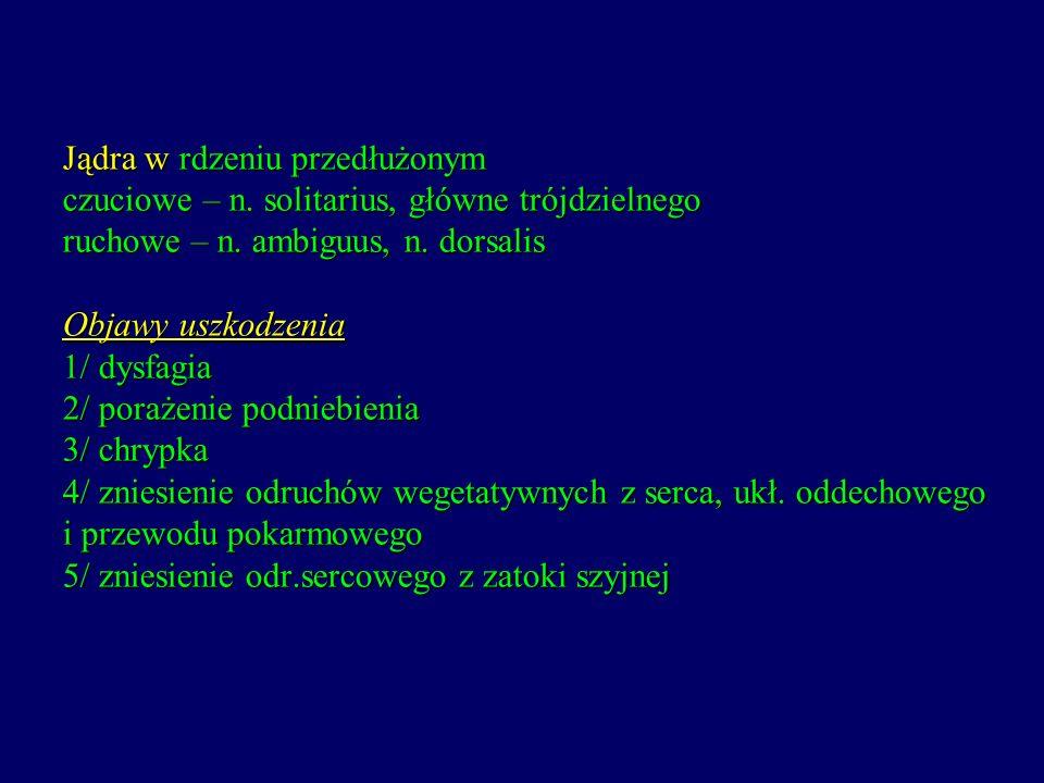 Jądra w rdzeniu przedłużonym czuciowe – n. solitarius, główne trójdzielnego ruchowe – n. ambiguus, n. dorsalis Objawy uszkodzenia 1/ dysfagia 2/ poraż