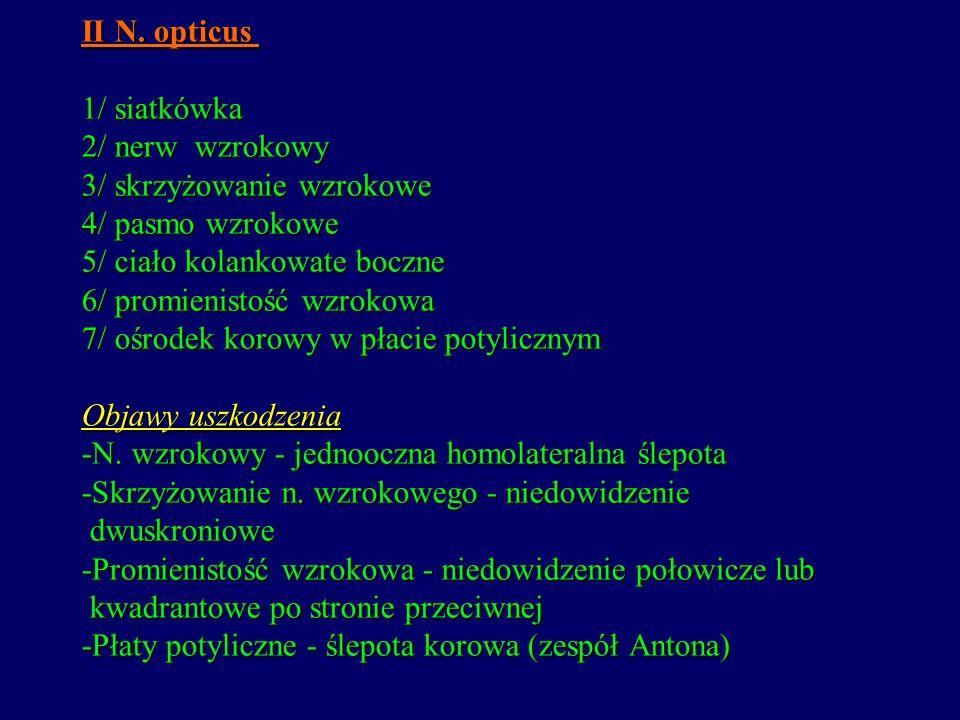 II N. opticus 1/ siatkówka 2/ nerw wzrokowy 3/ skrzyżowanie wzrokowe 4/ pasmo wzrokowe 5/ ciało kolankowate boczne 6/ promienistość wzrokowa 7/ ośrode