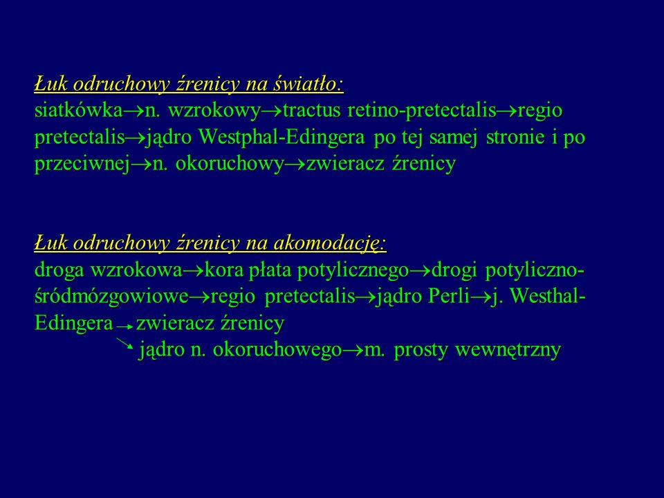 Zespół Hornera (uszkodzenie włókien sympatycznych) 1/ miosis 2/ ptosis 3/ endophtalnus 4/ anhidrosis na połowie twarzy 5/ rozszerzenie naczyń na połowie twarzy Źrenica Argyll-Robertsona (kiła, cukrzyca) 1/ brak odruchu źrenicy na światło 2/ zachowany odruch na akomodację 3/ wąskie, nieregularne źrenice