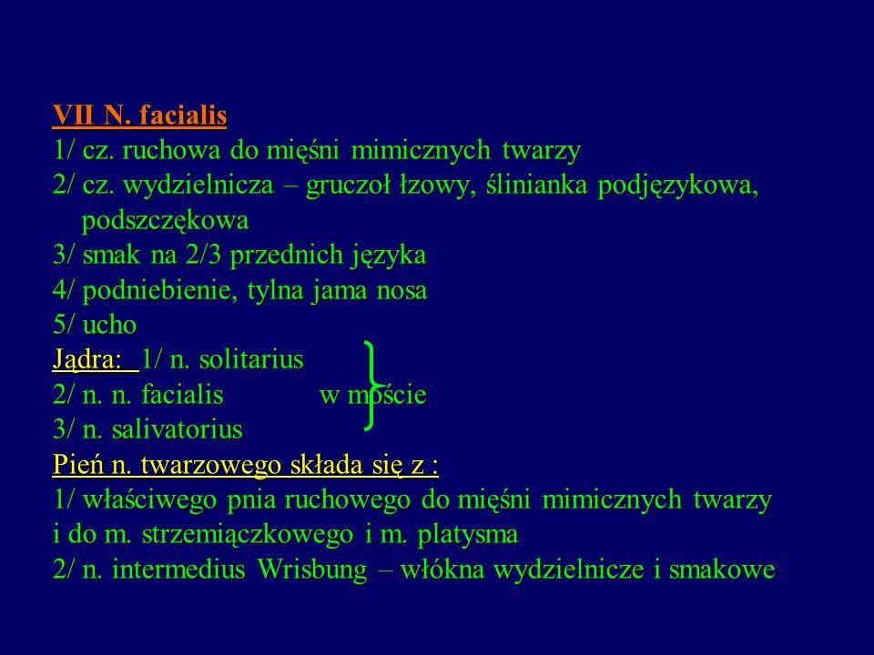 VII N. facialis 1/ cz. ruchowa do mięśni mimicznych twarzy 2/ cz. wydzielnicza – gruczoł łzowy, ślinianka podjęzykowa, podszczękowa 3/ smak na 2/3 prz