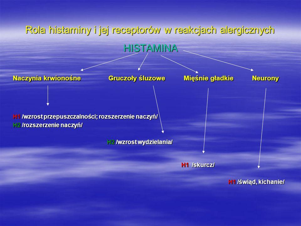 Rola histaminy i jej receptorów w reakcjach alergicznych H1 centralna rola w reakcji alergicznej H2 wzrost wydzielania soku żołądkowego; wpływ na układ krążenia H3 modulacja syntezy histaminy i jej uwalnianie w OUN H4 efekt pobudzenia nieznany???