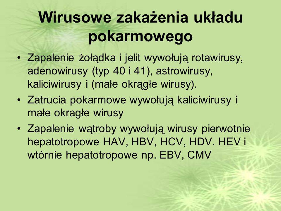 Wirusowe zakażenia układu pokarmowego Zapalenie żołądka i jelit wywołują rotawirusy, adenowirusy (typ 40 i 41), astrowirusy, kaliciwirusy i (małe okrągłe wirusy).