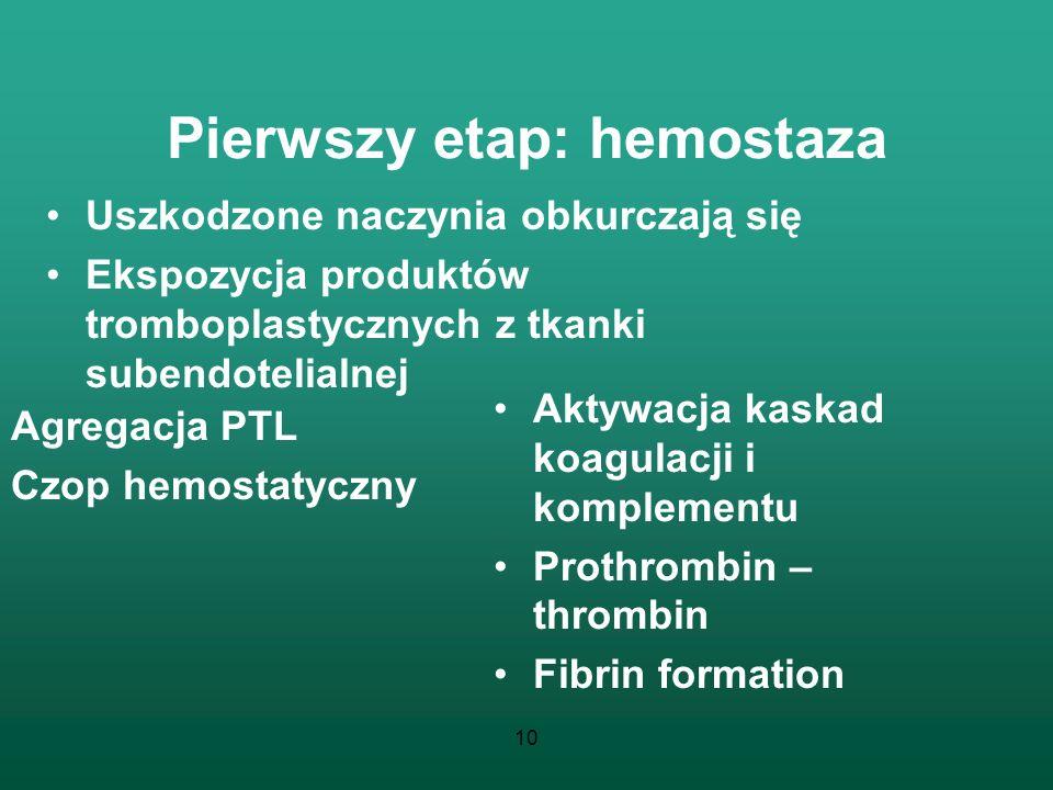 10 Pierwszy etap: hemostaza Uszkodzone naczynia obkurczają się Ekspozycja produktów tromboplastycznych z tkanki subendotelialnej Aktywacja kaskad koag