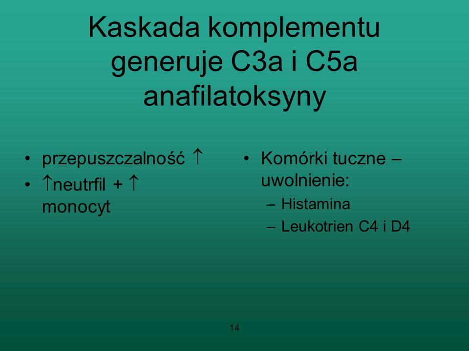 14 Kaskada komplementu generuje C3a i C5a anafilatoksyny przepuszczalność neutrfil + monocyt Komórki tuczne – uwolnienie: –Histamina –Leukotrien C4 i