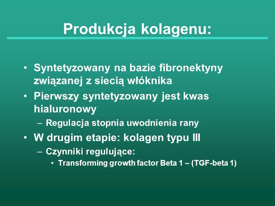 Produkcja kolagenu: Syntetyzowany na bazie fibronektyny związanej z siecią włóknika Pierwszy syntetyzowany jest kwas hialuronowy –Regulacja stopnia uw