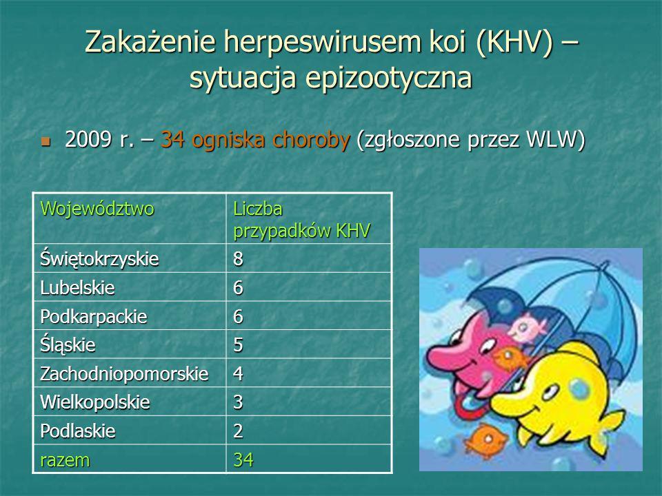 Zakażenie herpeswirusem koi (KHV) – sytuacja epizootyczna 2009 r. – 34 ogniska choroby (zgłoszone przez WLW) 2009 r. – 34 ogniska choroby (zgłoszone p
