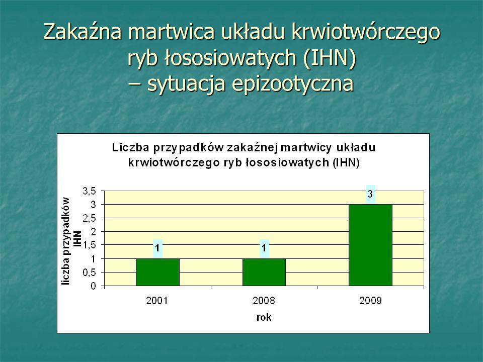 Zakaźna martwica układu krwiotwórczego ryb łososiowatych (IHN) – sytuacja epizootyczna