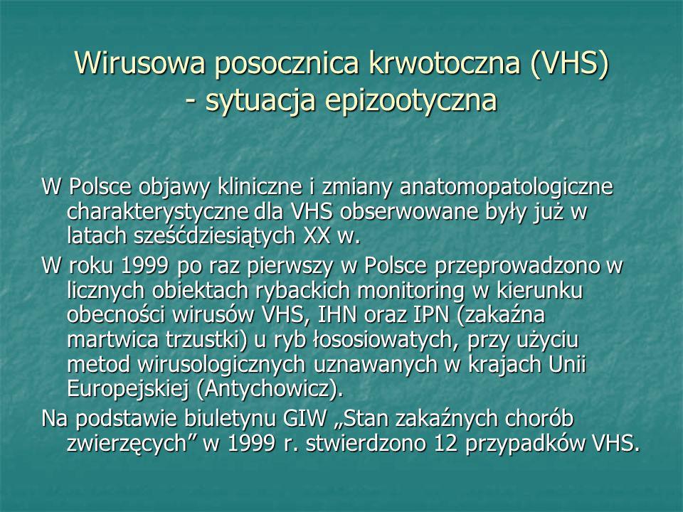 Wirusowa posocznica krwotoczna (VHS) - sytuacja epizootyczna W Polsce objawy kliniczne i zmiany anatomopatologiczne charakterystyczne dla VHS obserwow