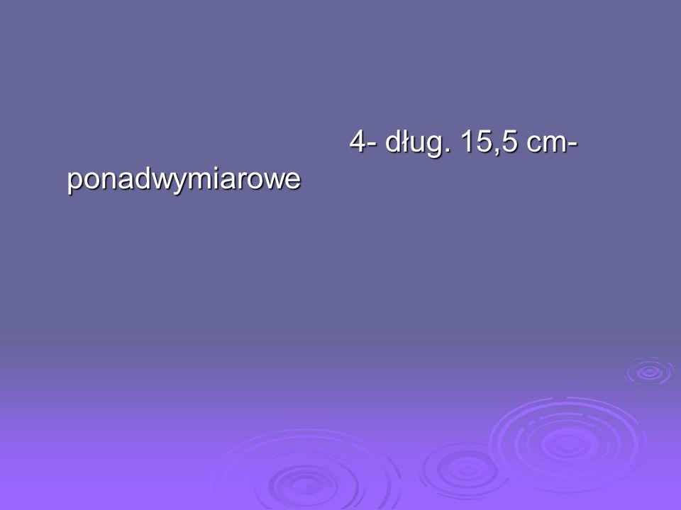 4- dług. 15,5 cm- ponadwymiarowe 4- dług. 15,5 cm- ponadwymiarowe