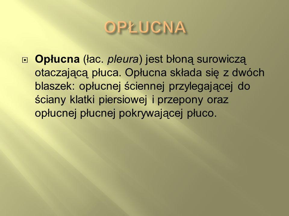 Opłucna (łac. pleura) jest błoną surowiczą otaczającą płuca. Opłucna składa się z dwóch blaszek: opłucnej ściennej przylegającej do ściany klatki pier