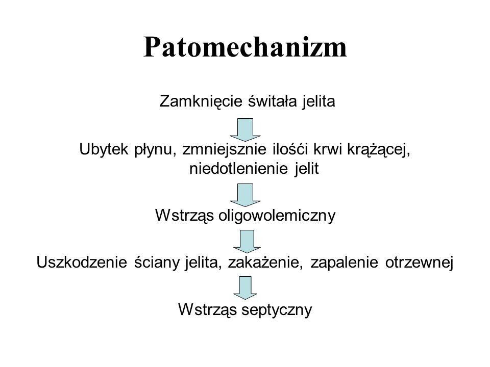 Patomechanizm Zamknięcie świtała jelita Ubytek płynu, zmniejsznie ilośći krwi krążącej, niedotlenienie jelit Wstrząs oligowolemiczny Uszkodzenie ścian