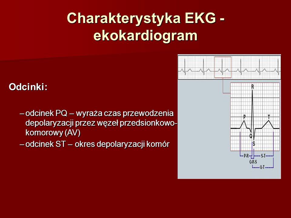 Charakterystyka EKG - ekokardiogram Odstępy: –odstęp PQ – wyraża czas przewodzenia depolaryzacji od węzła zatokowo- przedsionkowego do węzła przedsionkowo- komorowy (SA -> AV) –odstęp ST – wyraża czas wolnej i szybkiej repolaryzacji mięśnia komór (2 i 3 faza repolaryzacji) –odstęp QT – wyraża czas potencjału czynnościowego mięśnia komór (depolaryzacja + repolaryzacja)