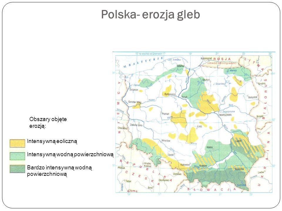 Polska- erozja gleb Obszary objęte erozją: Intensywną eoliczną Intensywną wodną powierzchniową Bardzo intensywną wodną powierzchniową