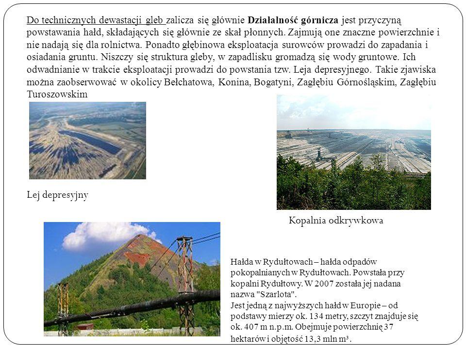 Do technicznych dewastacji gleb zalicza się głównie Działalność górnicza jest przyczyną powstawania hałd, składających się głównie ze skał płonnych. Z