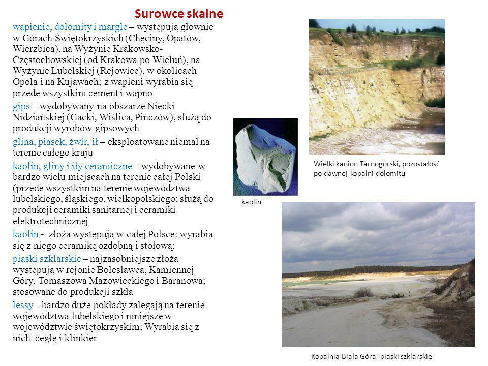 Surowce skalne wapienie, dolomity i margle – występują głownie w Górach Świętokrzyskich (Chęciny, Opatów, Wierzbica), na Wyżynie Krakowsko- Częstochow