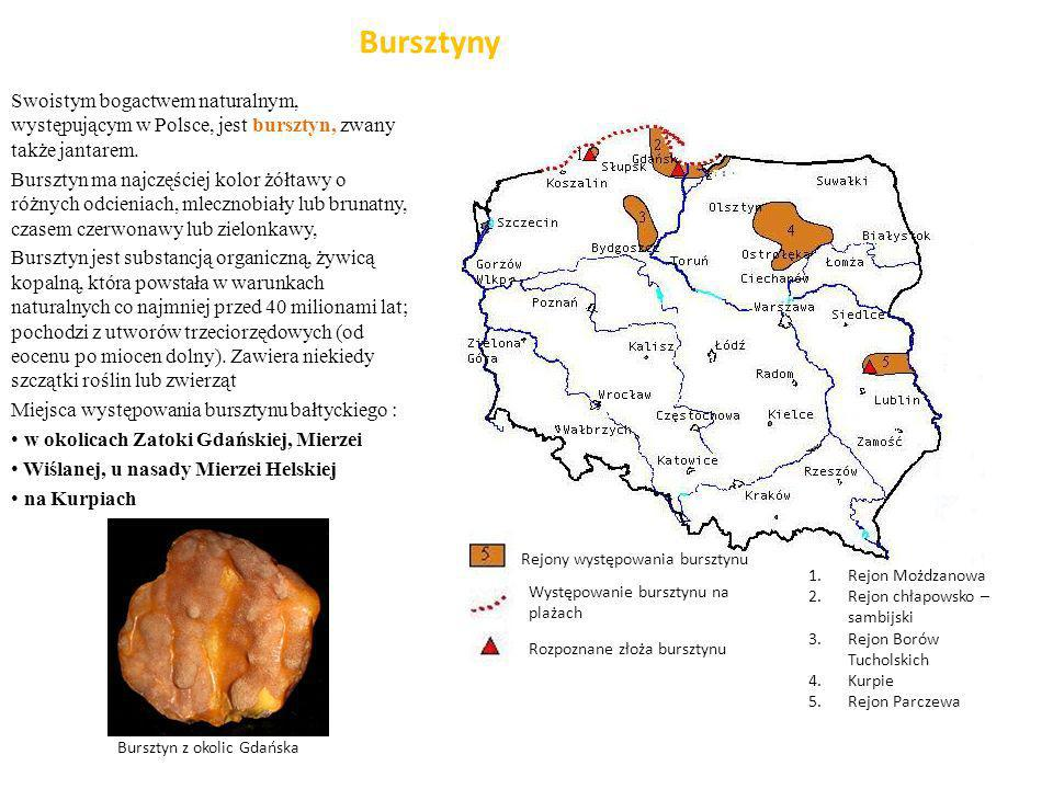 Bursztyny Swoistym bogactwem naturalnym, występującym w Polsce, jest bursztyn, zwany także jantarem. Bursztyn ma najczęściej kolor żółtawy o różnych o