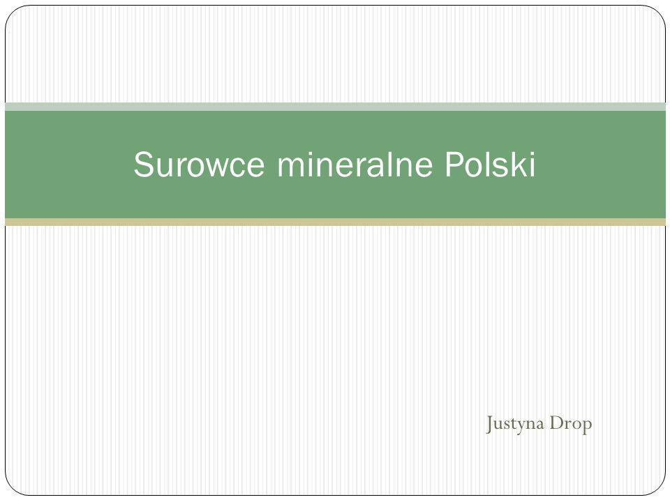Ogólny podział surowców mineralnych Surowiec mineralny - wydobyta ze złoża kopalina użyteczna, mająca zastosowanie w gospodarce, produkt przemysłu wydobywczego.