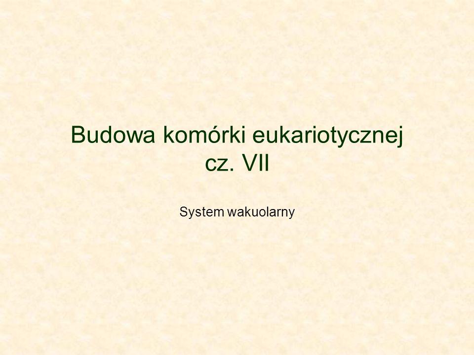 Budowa komórki eukariotycznej cz. VII System wakuolarny
