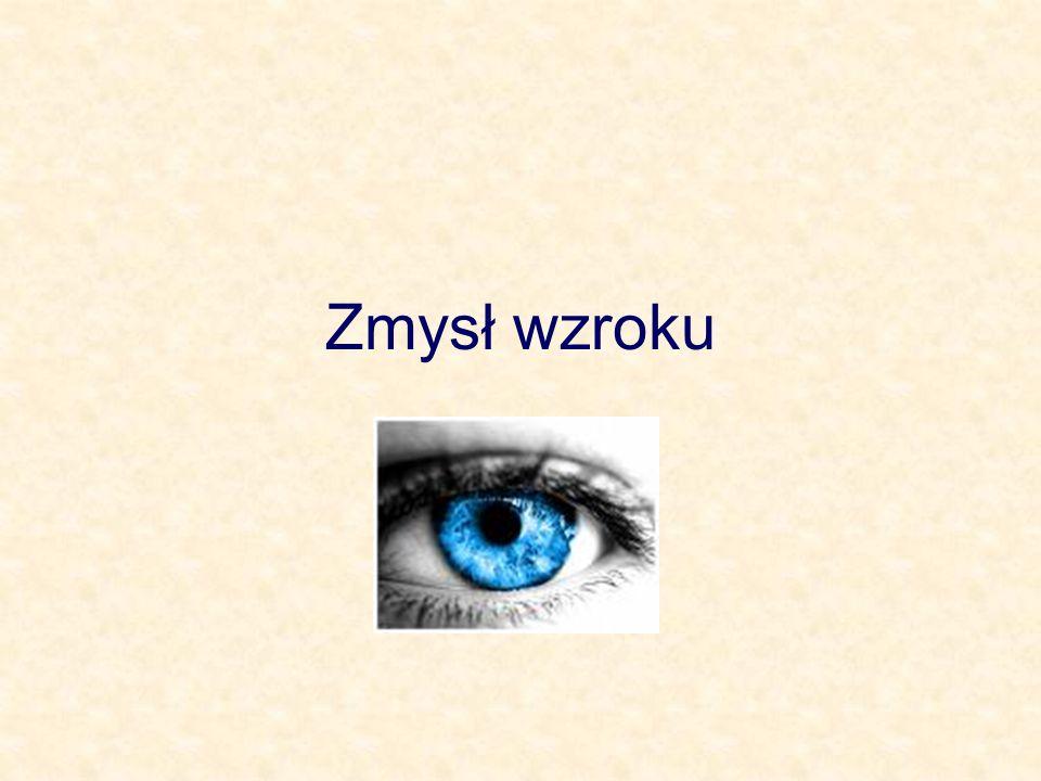 Zmysł wzroku