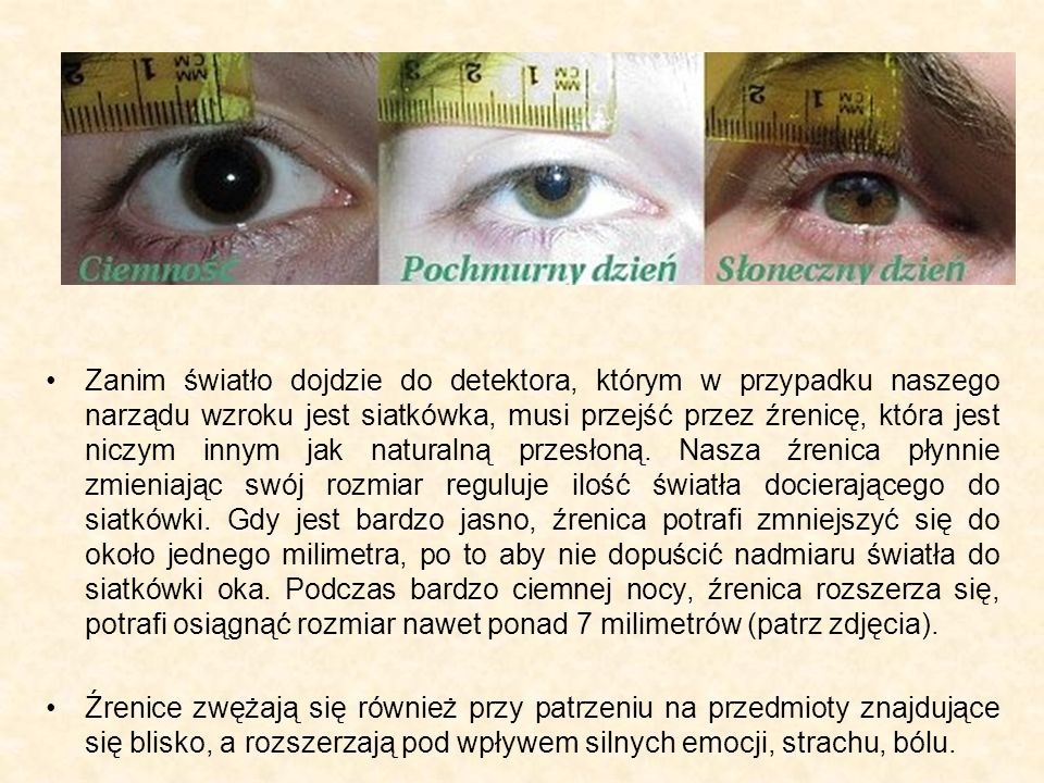 Zanim światło dojdzie do detektora, którym w przypadku naszego narządu wzroku jest siatkówka, musi przejść przez źrenicę, która jest niczym innym jak