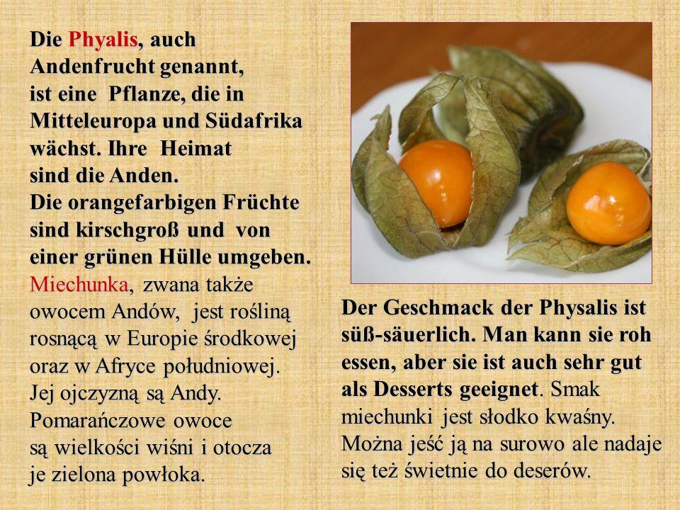 Die Phyalis, auch Andenfrucht genannt, ist eine Pflanze, die in Mitteleuropa und Südafrika wächst. Ihre Heimat sind die Anden. Die orangefarbigen Früc