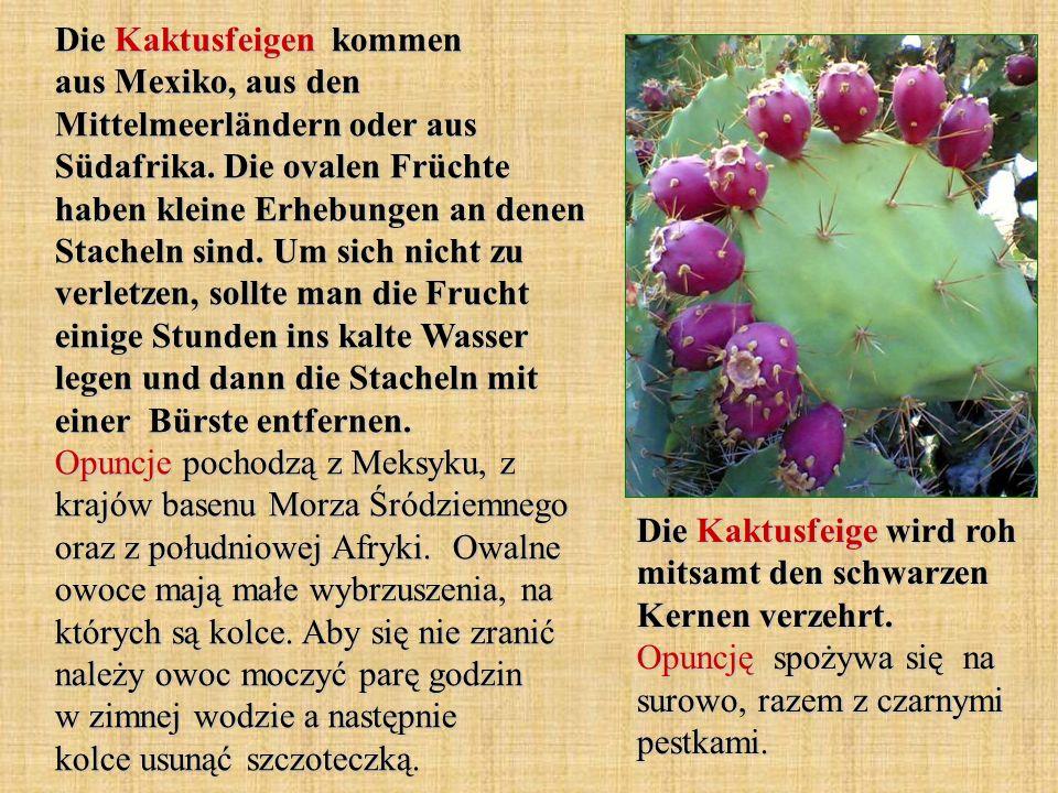 Die Kaktusfeigen kommen aus Mexiko, aus den Mittelmeerländern oder aus Südafrika. Die ovalen Früchte haben kleine Erhebungen an denen Stacheln sind. U