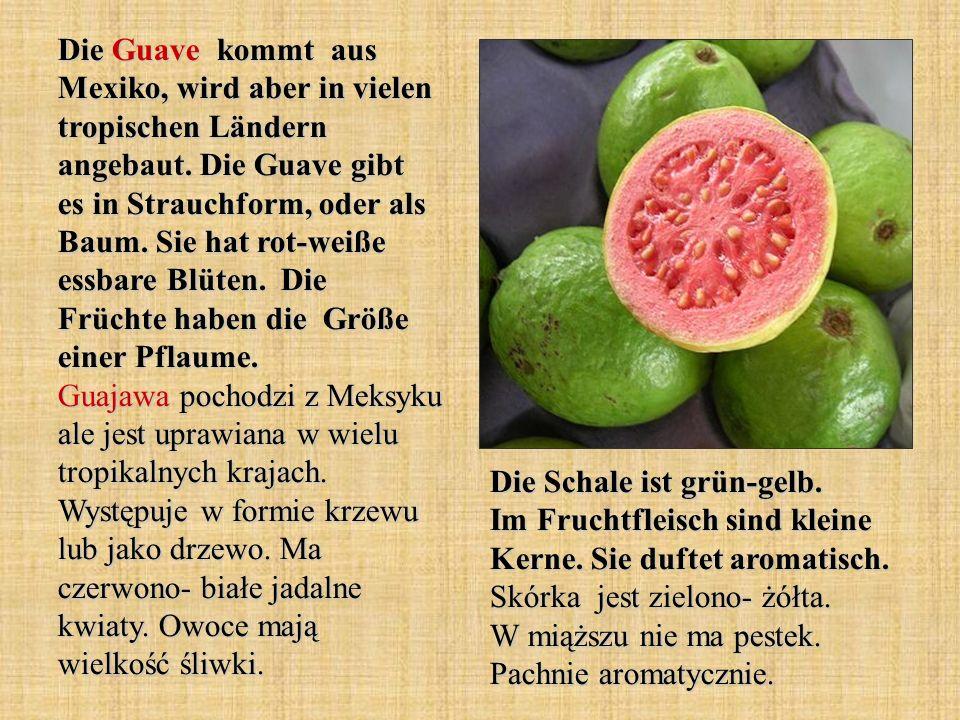 Die Guave kommt aus Mexiko, wird aber in vielen tropischen Ländern angebaut. Die Guave gibt es in Strauchform, oder als Baum. Sie hat rot-weiße essbar