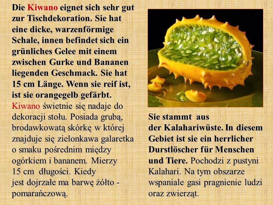 Die Kiwano eignet sich sehr gut zur Tischdekoration. Sie hat eine dicke, warzenförmige Schale, innen befindet sich ein grünliches Gelee mit einem zwis