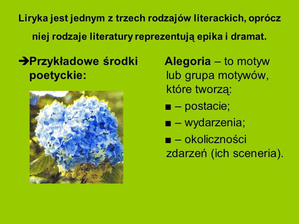 Liryka jest jednym z trzech rodzajów literackich, oprócz niej rodzaje literatury reprezentują epika i dramat. Przykładowe środki poetyckie: Alegoria –