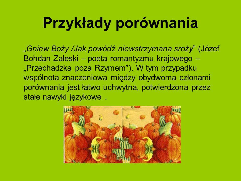 Przykłady porównania Gniew Boży /Jak powódź niewstrzymana sroży (Józef Bohdan Zaleski – poeta romantyzmu krajowego – Przechadzka poza Rzymem). W tym p