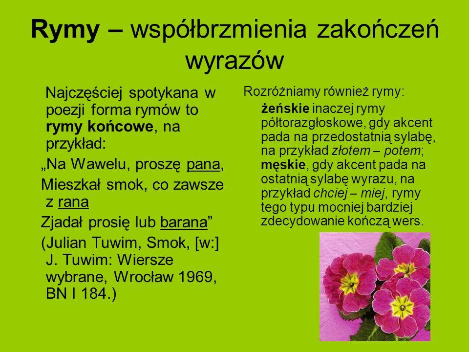 Rymy – współbrzmienia zakończeń wyrazów Najczęściej spotykana w poezji forma rymów to rymy końcowe, na przykład: Na Wawelu, proszę pana, Mieszkał smok