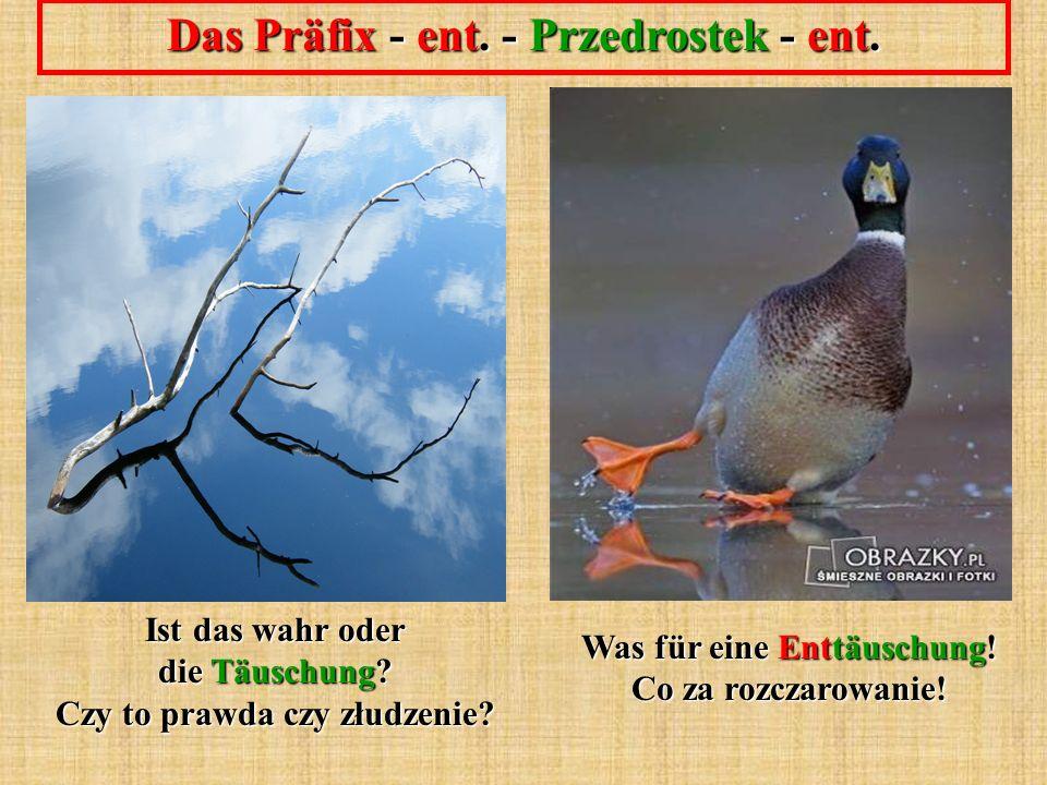 Das Präfix - ent. - Przedrostek - ent. Was für eine Enttäuschung.