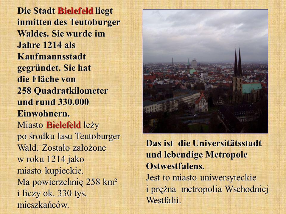 Die Stadt Bielefeld liegt inmitten des Teutoburger Waldes.