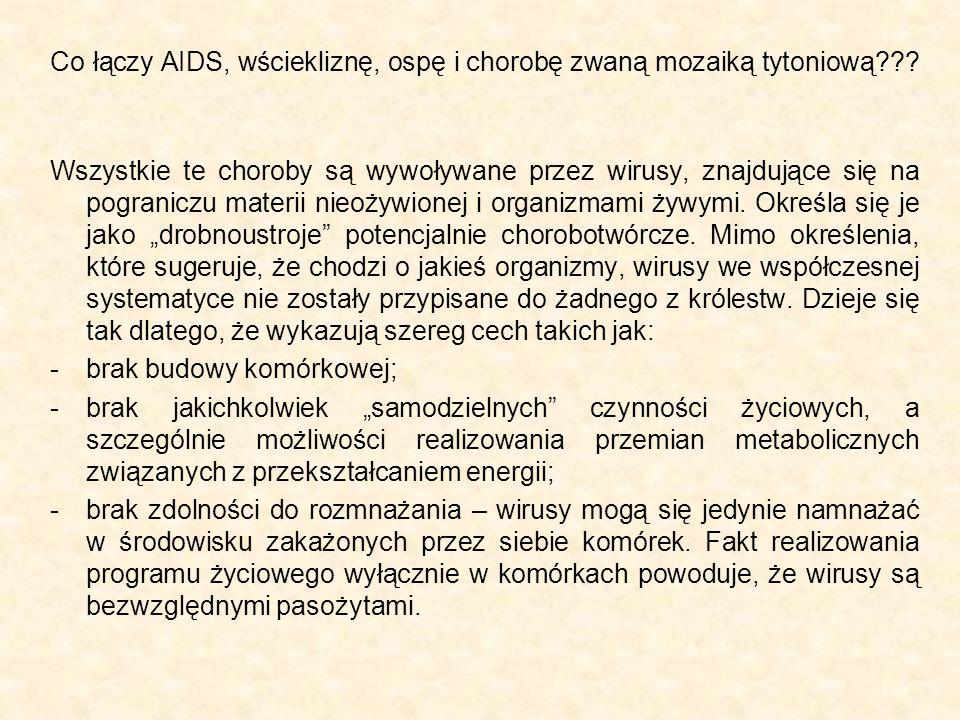 Co łączy AIDS, wściekliznę, ospę i chorobę zwaną mozaiką tytoniową??? Wszystkie te choroby są wywoływane przez wirusy, znajdujące się na pograniczu ma