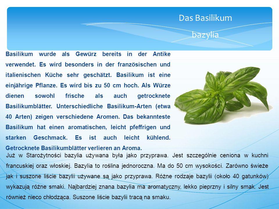 Das Basilikum bazylia Basilikum wurde als Gewürz bereits in der Antike verwendet.